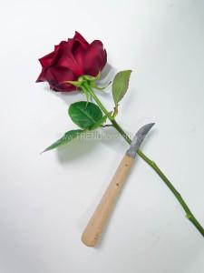 ros och kniv