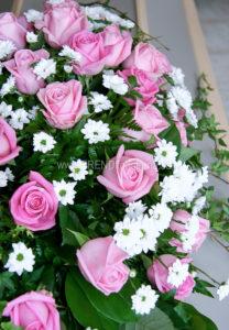 klassisk modell rosa vit