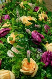 låg modell apricos lila