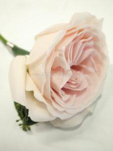 Coursage rosa ros