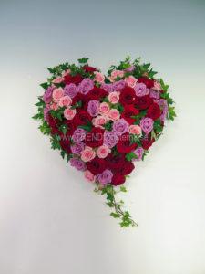 Fyllt hjärta kallrosa lila rött