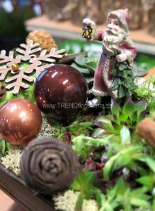 plantering brun jul
