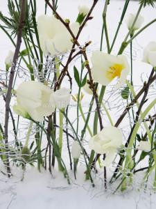 Vinterdekoration i snö