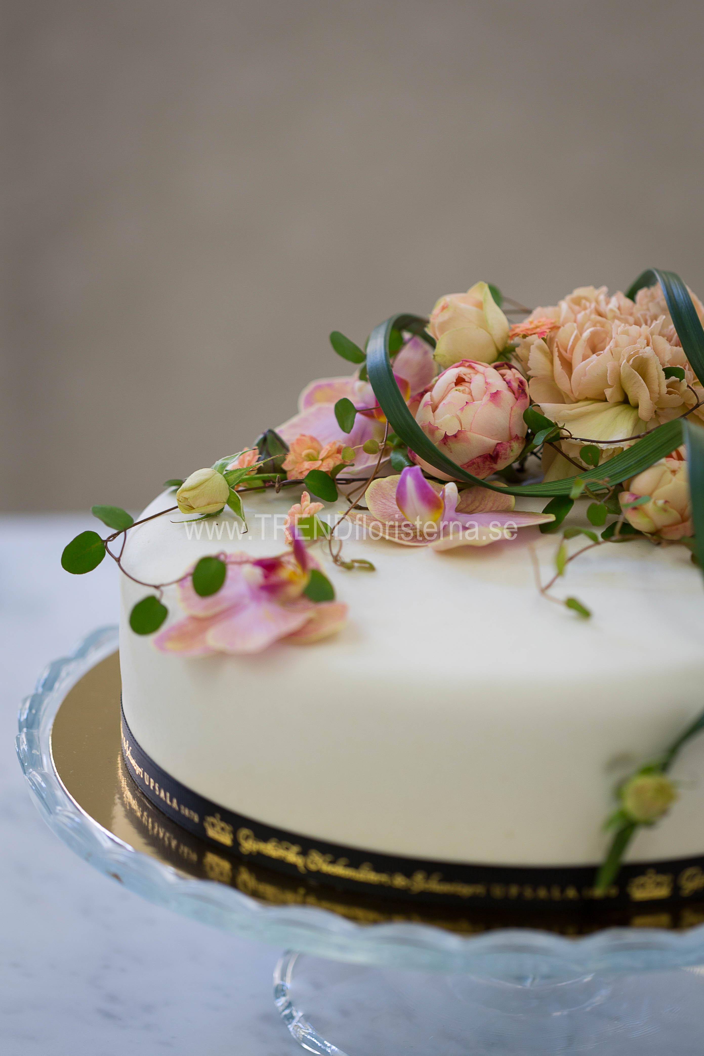 5cf40d83cbf3 ... enkel tårta apricos ...