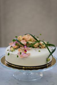 enkel tårta apricos