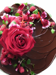 chokladtårta med röd dekorationchokladtårta med röd dekoration
